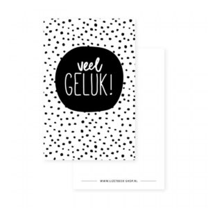 Lizet Beek, minikaartje / kadokaartje Veel geluk stipjes