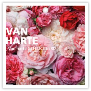 Give X, vierkant minikaartje Van harte gefeliciteerd roze bloemenmix