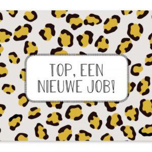 Studio Jans, A6 kaart, Nieuwe job