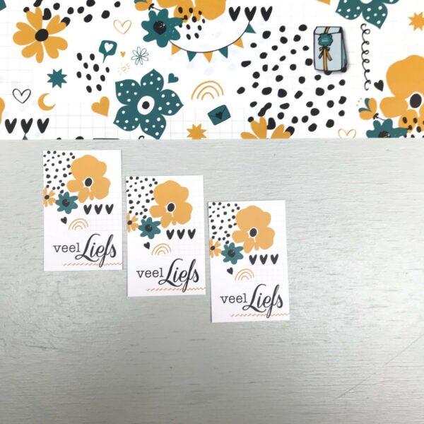 ViaSuuS print, minikaartje Liefswit